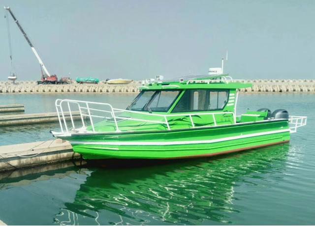 9.8m pontoon fishing boat